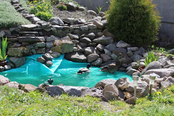zakładanie oczek wodnych grodzisk mazowiecki